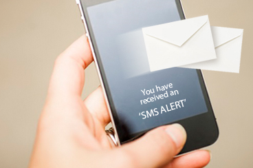 Your Website Monitoring Service Alerts You: This Is the Backup Plan You Need